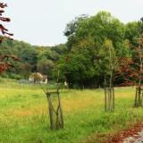 Lesnícky náučný chodník Zvernica Teplý Vrch