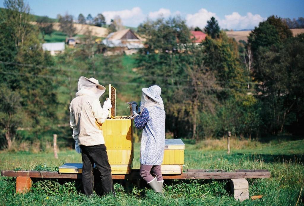 Včelí kRaj, Liešica