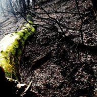 06_Krasy prírody